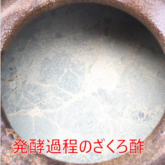 SU0167