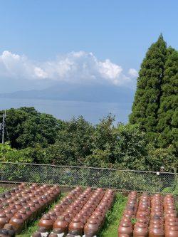 鹿児島黒酢・甕酢風景『夏空の甕(かめ)畑』