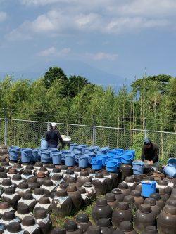 20210803『春最後の黒酢の仕込み』春仕込みの最後の黒酢の仕込みになります。重久盛一酢醸造場、重久本舗
